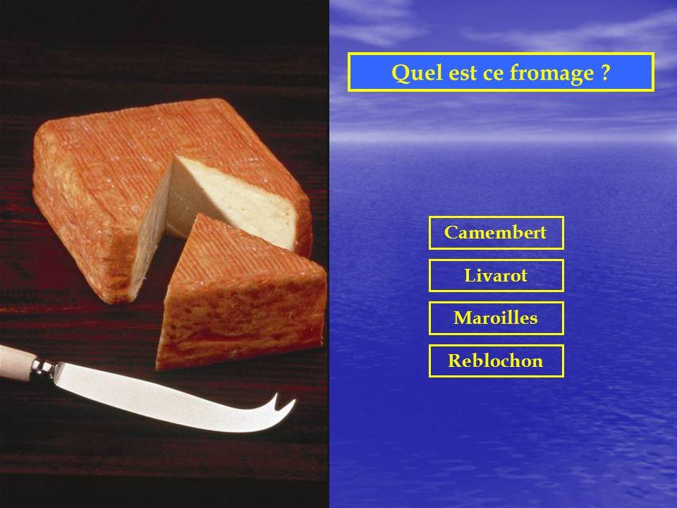 Quel est ce fromage Camembert Livarot Maroilles Reblochon