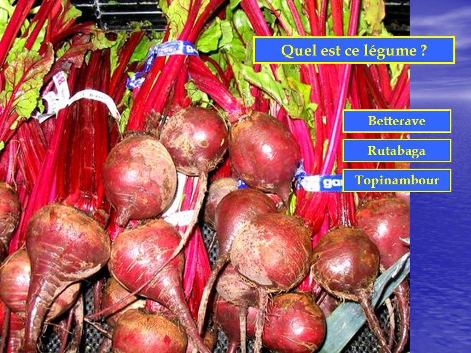 Quel est ce légume Betterave Rutabaga Topinambour