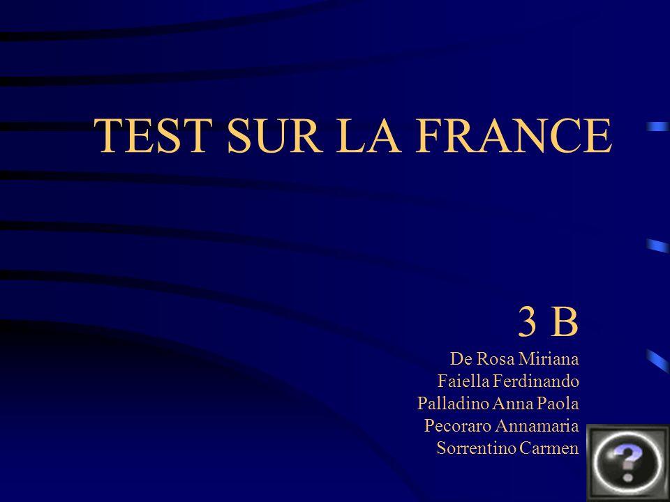 TEST SUR LA FRANCE 3 B De Rosa Miriana Faiella Ferdinando