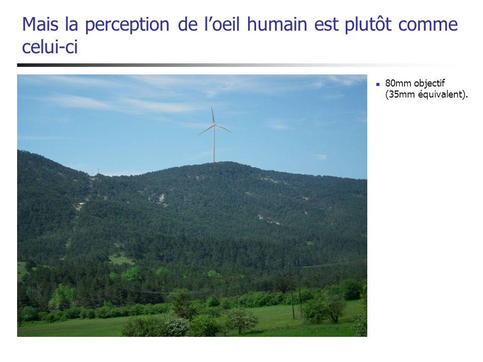 Mais la perception de l'oeil humain est plutôt comme celui-ci