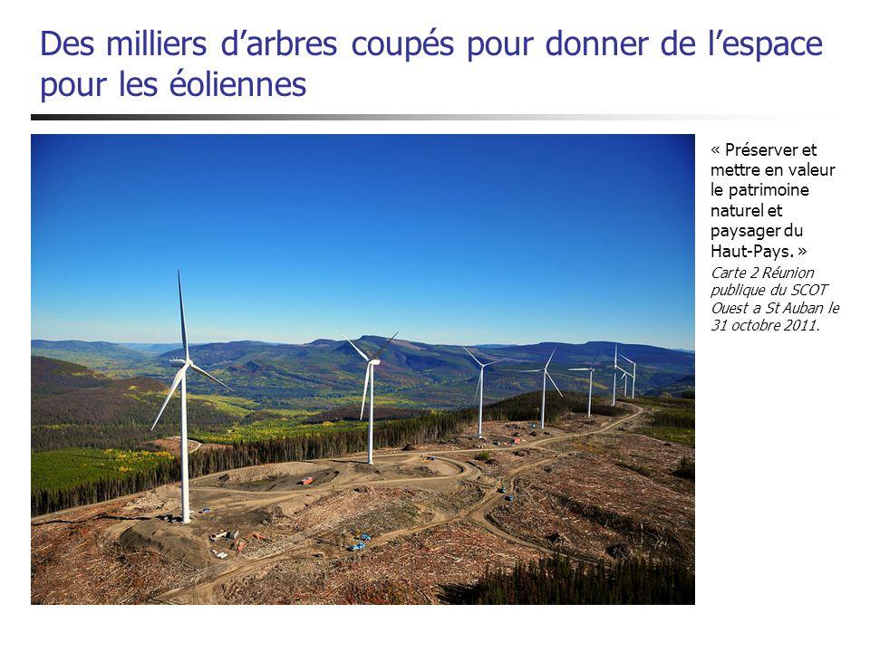 Des milliers d'arbres coupés pour donner de l'espace pour les éoliennes