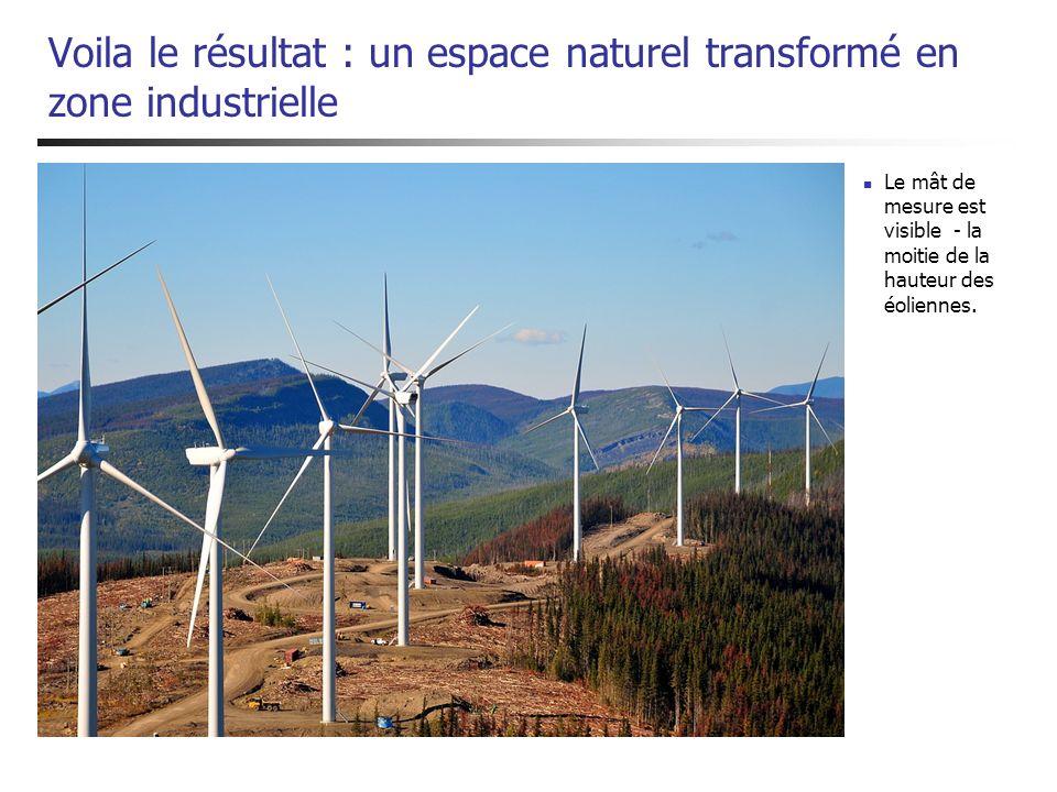 Voila le résultat : un espace naturel transformé en zone industrielle