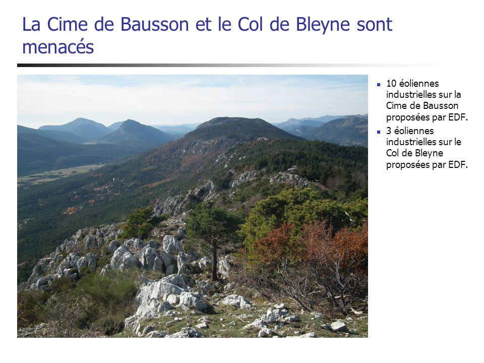 La Cime de Bausson et le Col de Bleyne sont menacés