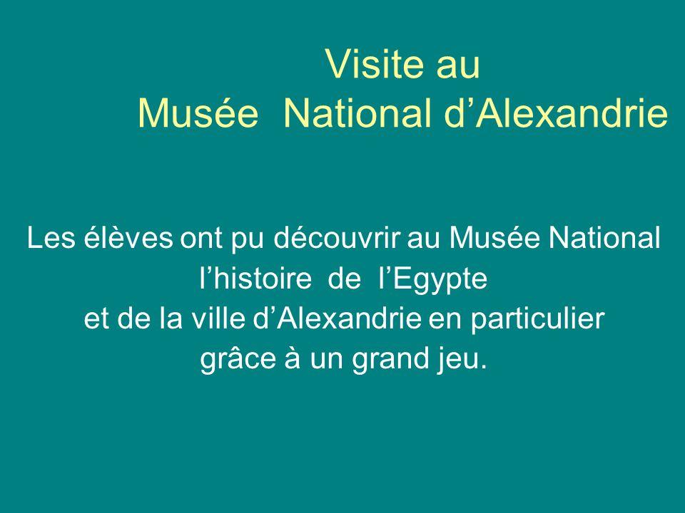 Visite au Musée National d'Alexandrie