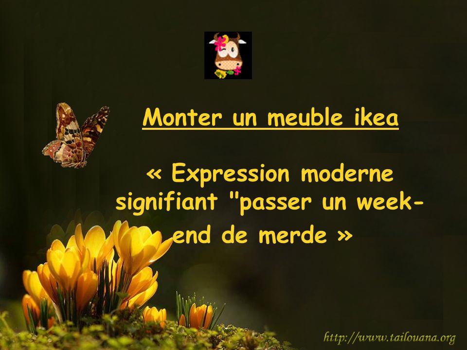 Monter un meuble ikea « Expression moderne signifiant passer un week-end de merde »