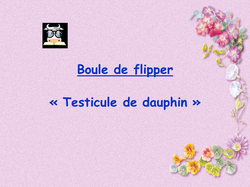 Boule de flipper « Testicule de dauphin »