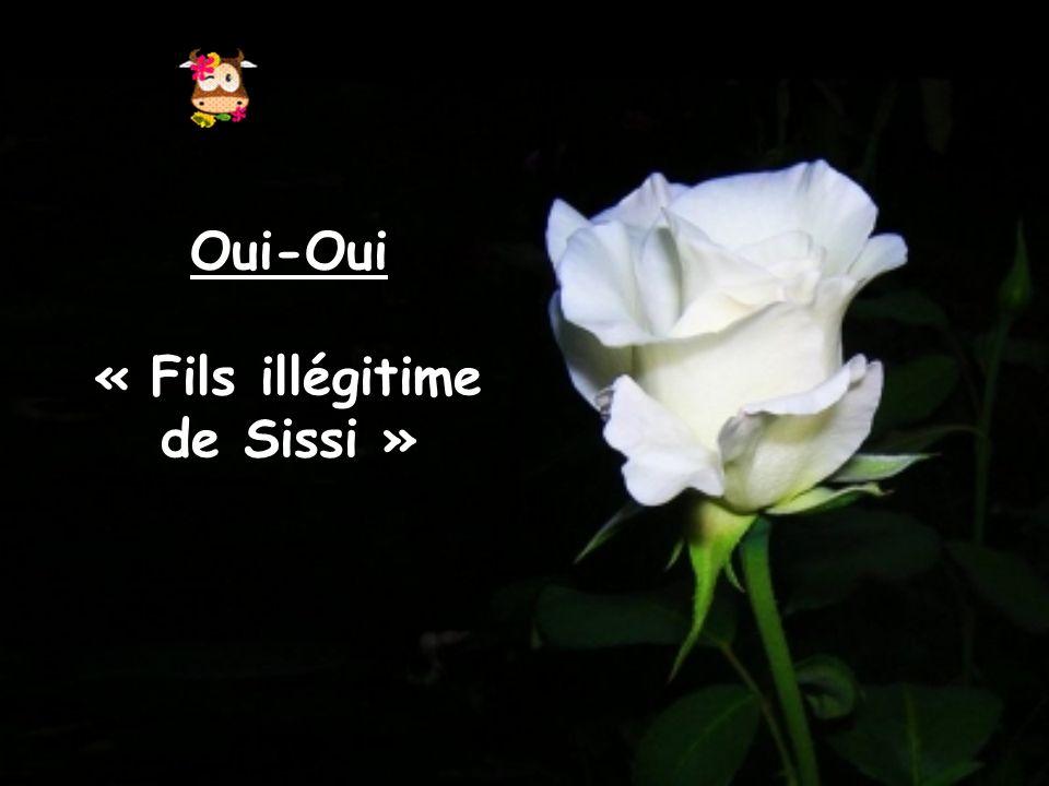 Oui-Oui « Fils illégitime de Sissi »