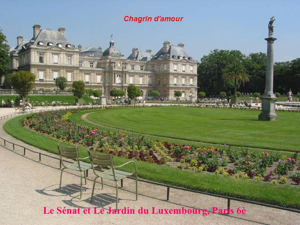 Le Sénat et Le Jardin du Luxembourg, Paris 6è