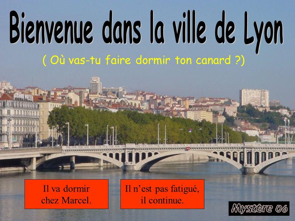Bienvenue dans la ville de Lyon