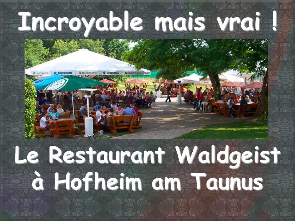 Le Restaurant Waldgeist