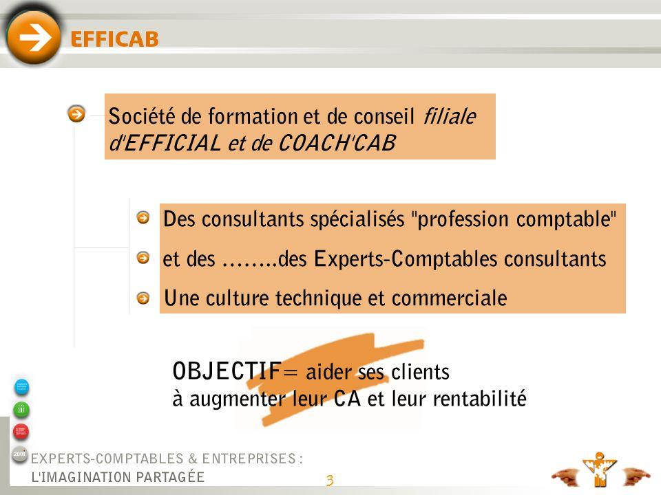 Diagnostic du cabinet Parcours Pour Gagner Chiffre d'affaires 