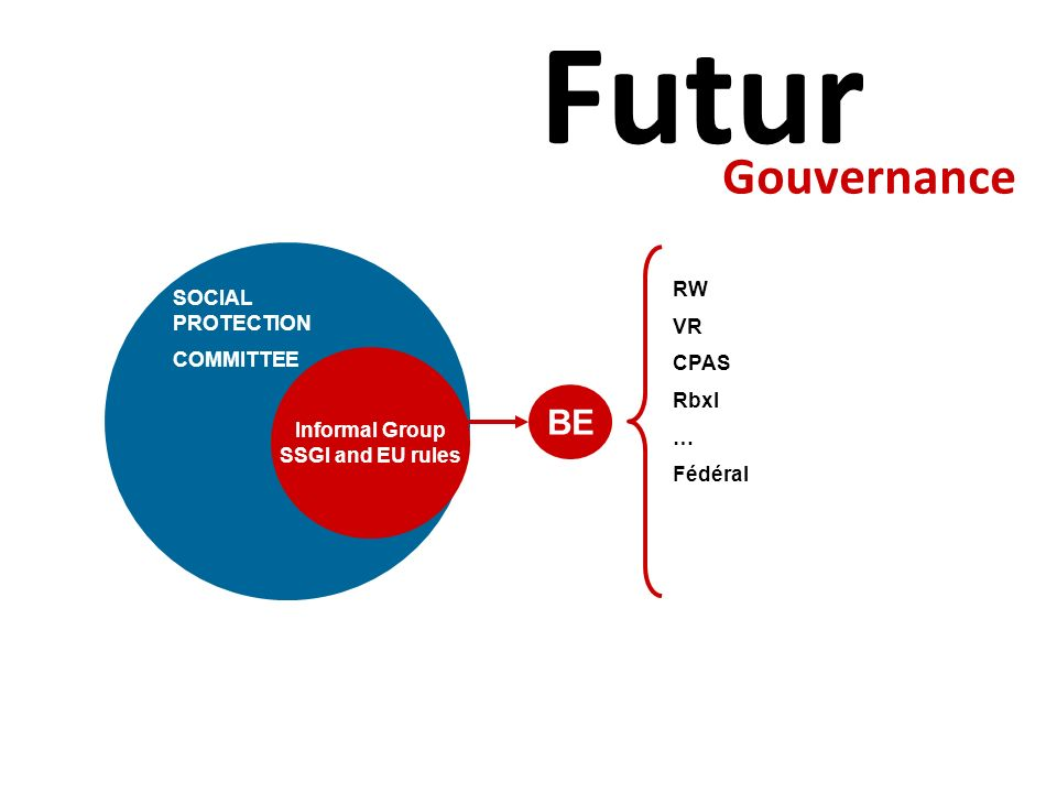 Futur Gouvernance BE RW SOCIAL PROTECTION VR COMMITTEE CPAS Rbxl …