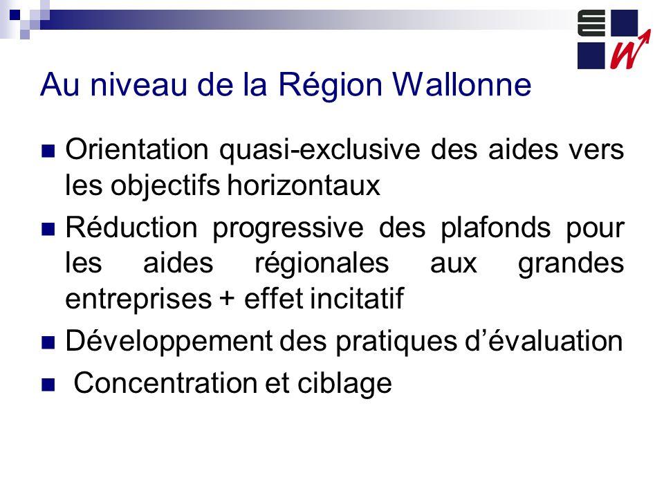 Au niveau de la Région Wallonne