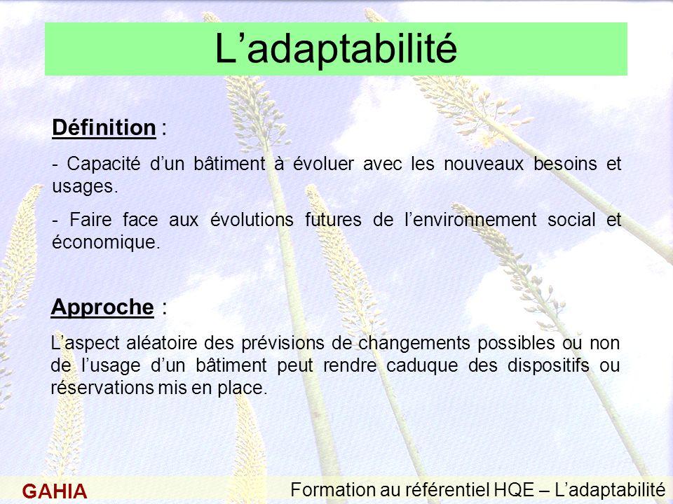 L'adaptabilité Définition : Approche :
