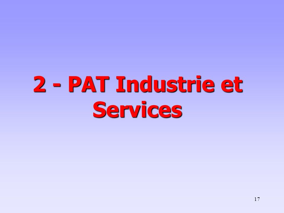 2 - PAT Industrie et Services