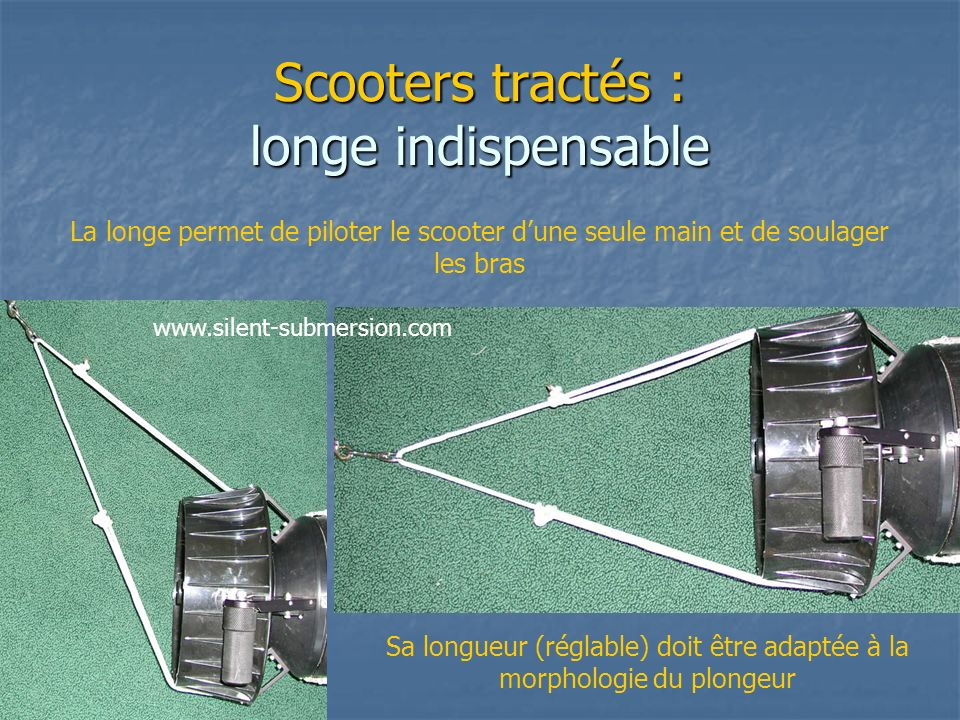 Scooters tractés : longe indispensable