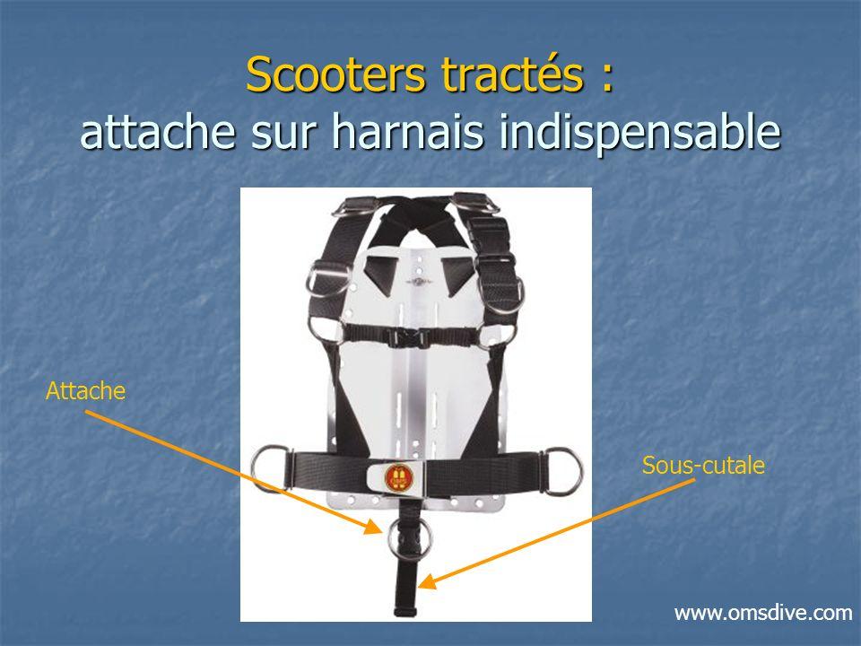 Scooters tractés : attache sur harnais indispensable