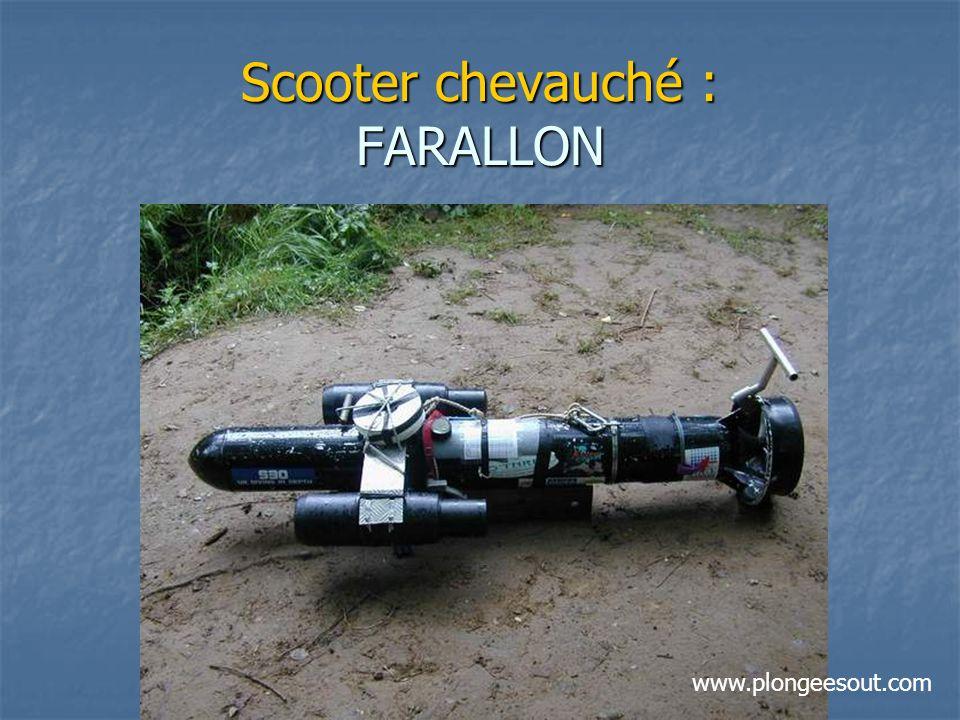Scooter chevauché : FARALLON