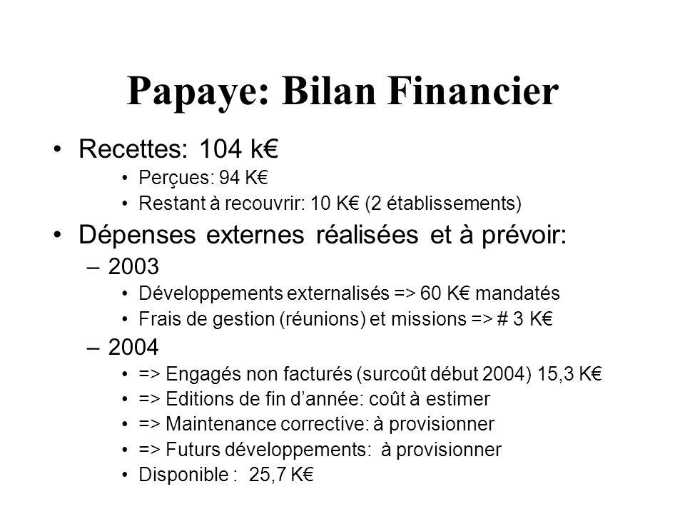 Papaye: Bilan Financier