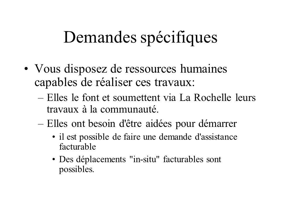 Demandes spécifiquesVous disposez de ressources humaines capables de réaliser ces travaux: