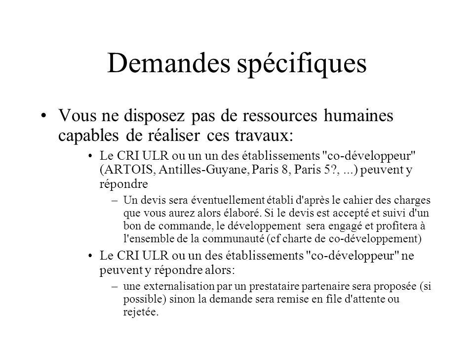 Demandes spécifiquesVous ne disposez pas de ressources humaines capables de réaliser ces travaux: