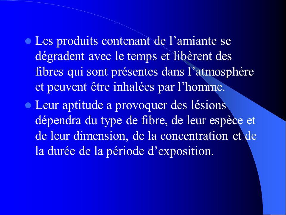 Les produits contenant de l'amiante se dégradent avec le temps et libèrent des fibres qui sont présentes dans l'atmosphère et peuvent être inhalées par l'homme.