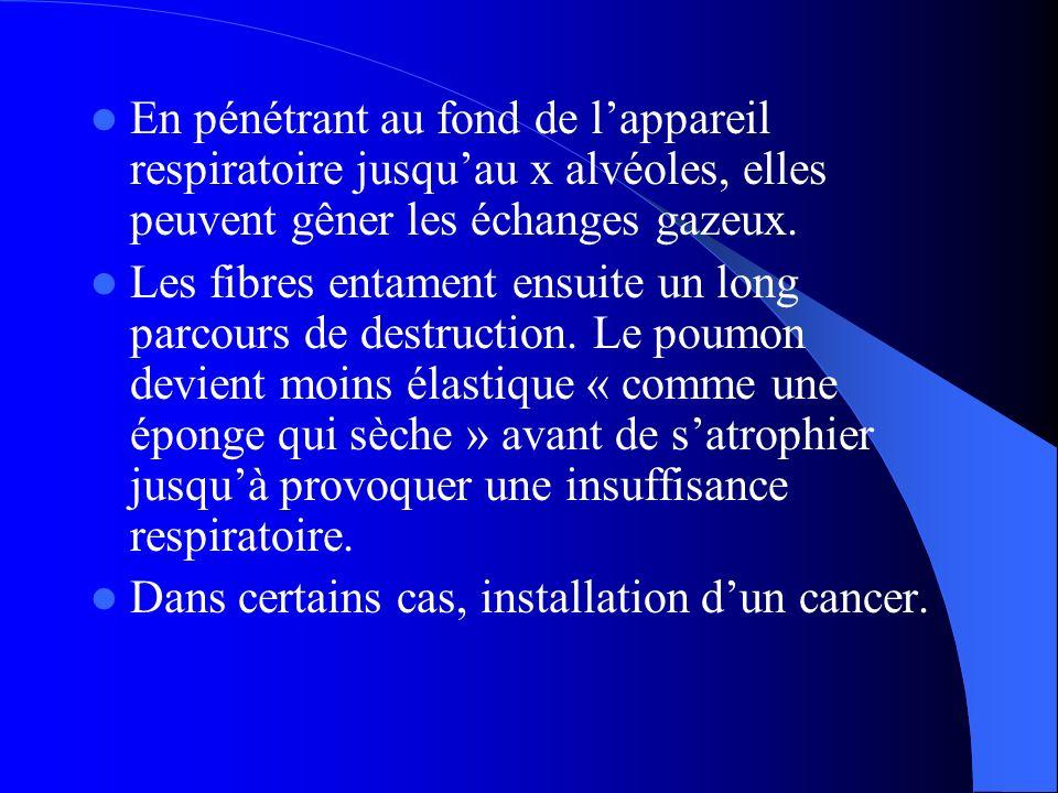 En pénétrant au fond de l'appareil respiratoire jusqu'au x alvéoles, elles peuvent gêner les échanges gazeux.
