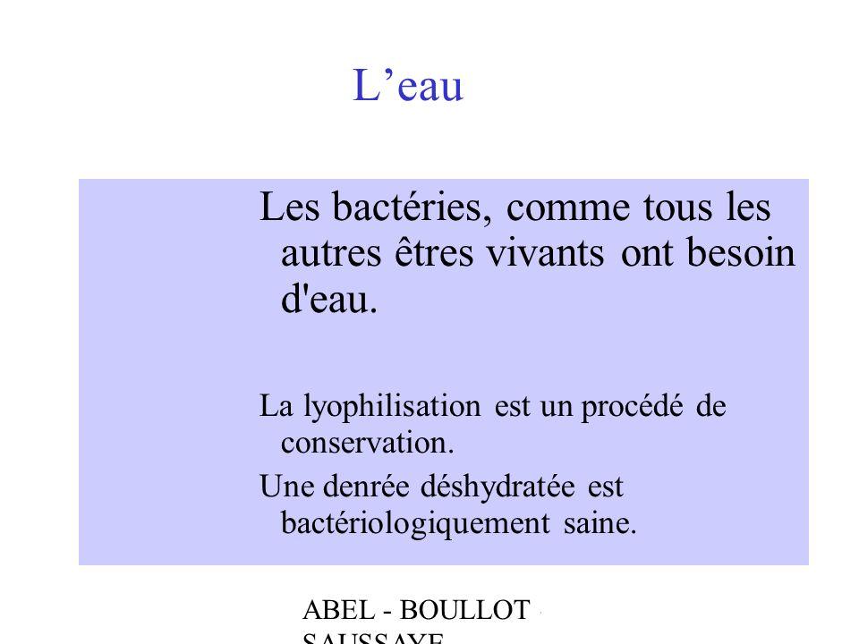 L'eau Les bactéries, comme tous les autres êtres vivants ont besoin d eau. La lyophilisation est un procédé de conservation.