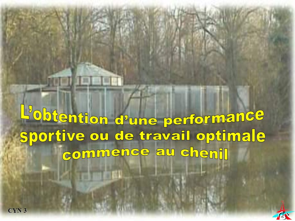 L'obtention d'une performance sportive ou de travail optimale