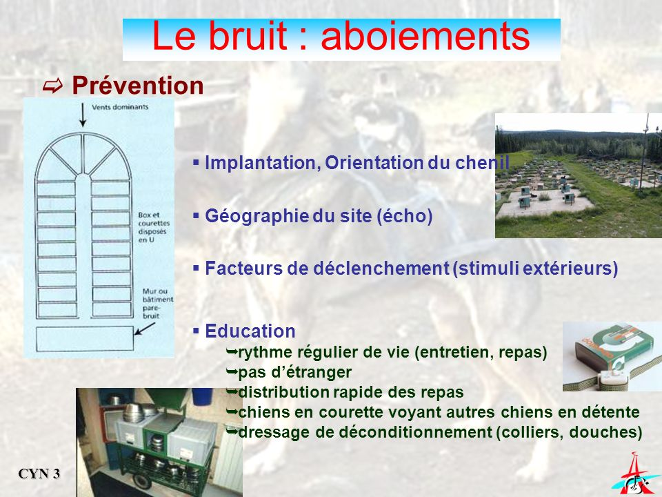 Le bruit : aboiements Prévention Implantation, Orientation du chenil