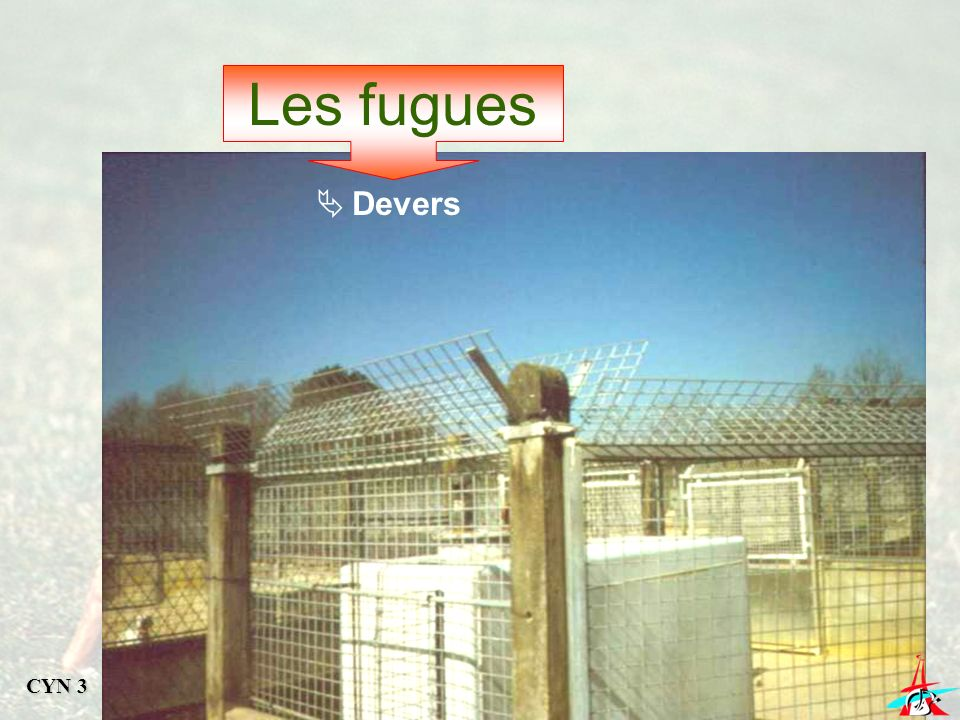 Les fugues Devers CYN 3