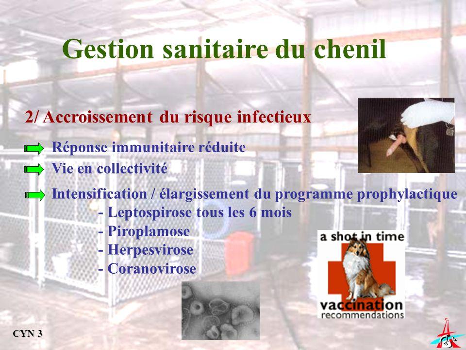 Gestion sanitaire du chenil