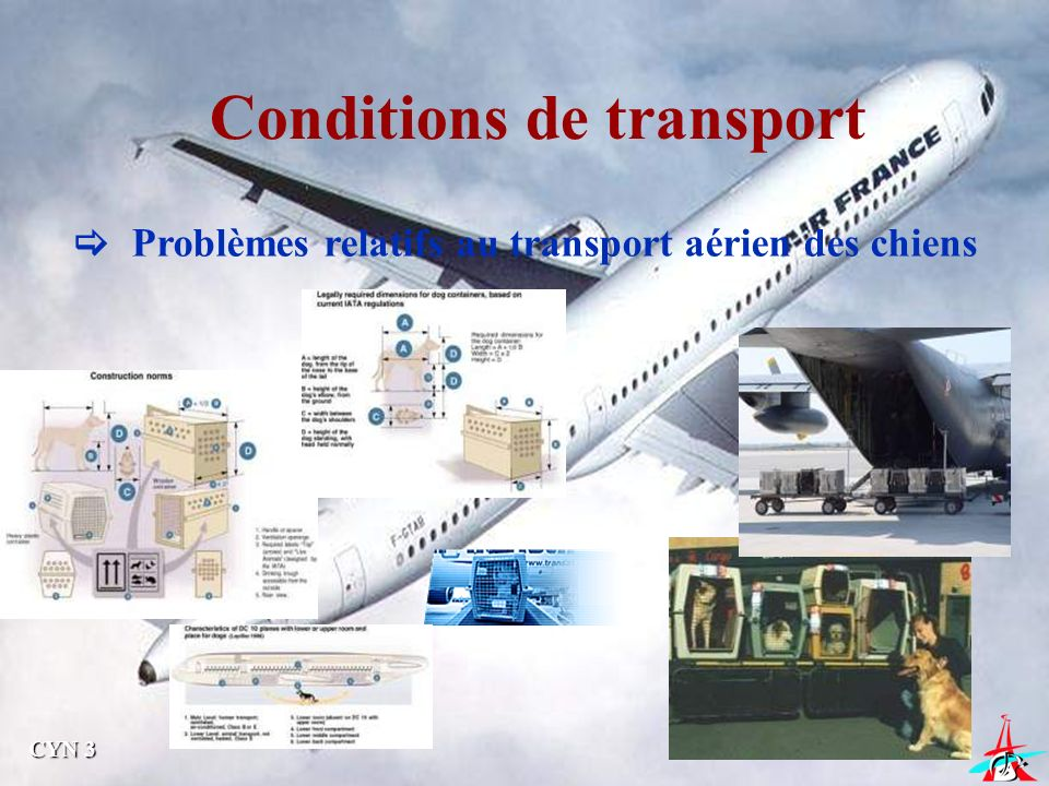 Conditions de transport