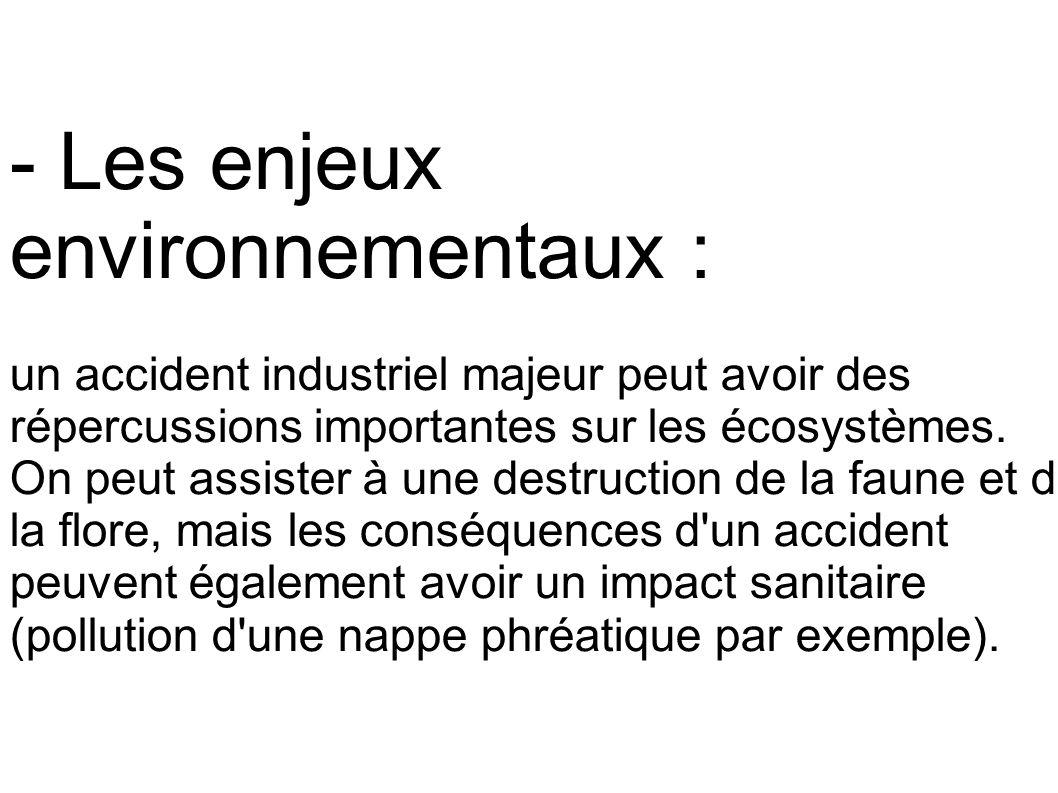 - Les enjeux environnementaux :