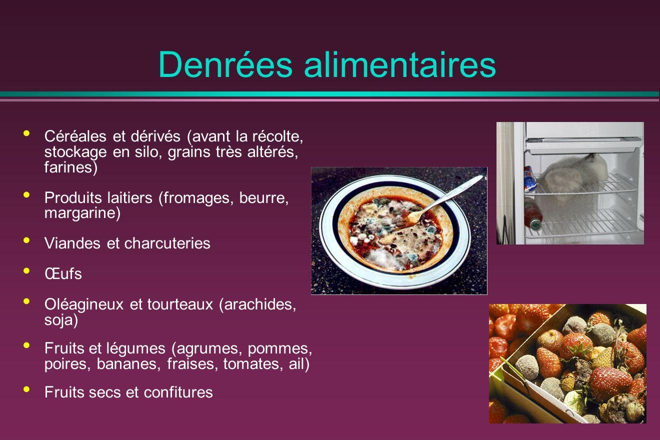 Denrées alimentaires Céréales et dérivés (avant la récolte, stockage en silo, grains très altérés, farines)