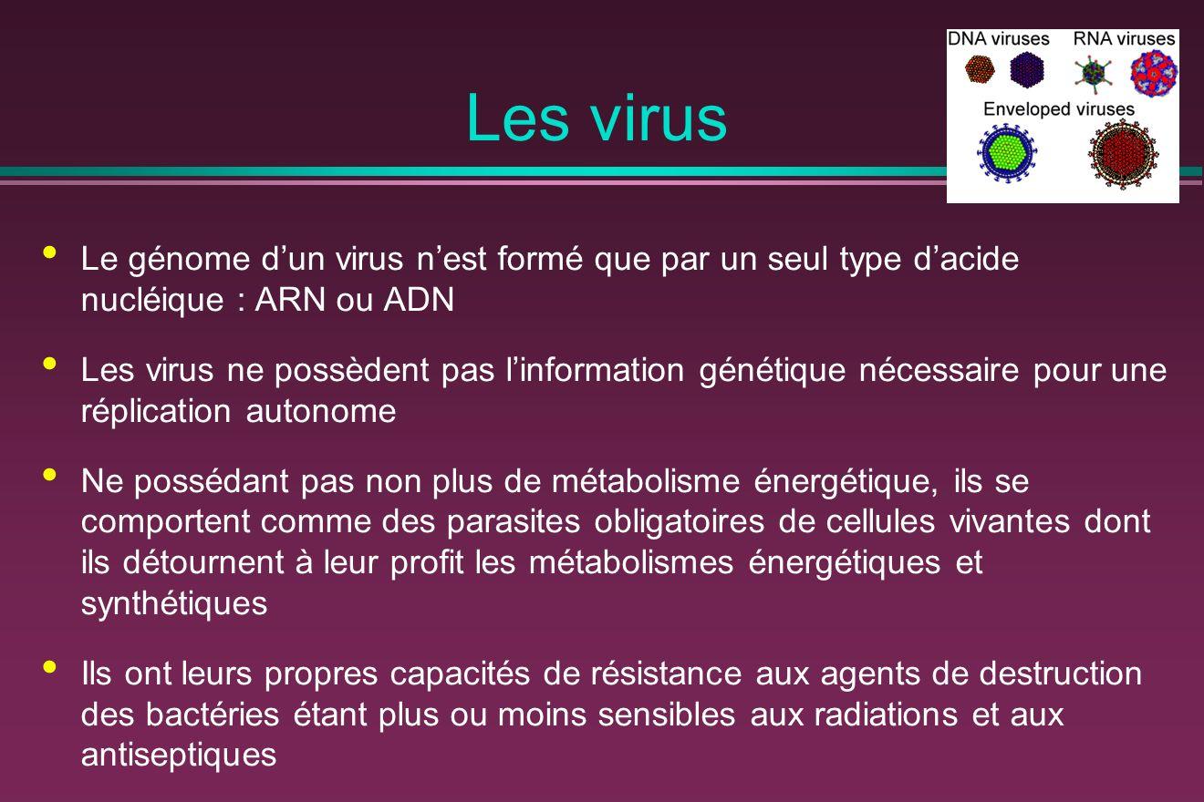 Les virus Le génome d'un virus n'est formé que par un seul type d'acide nucléique : ARN ou ADN.