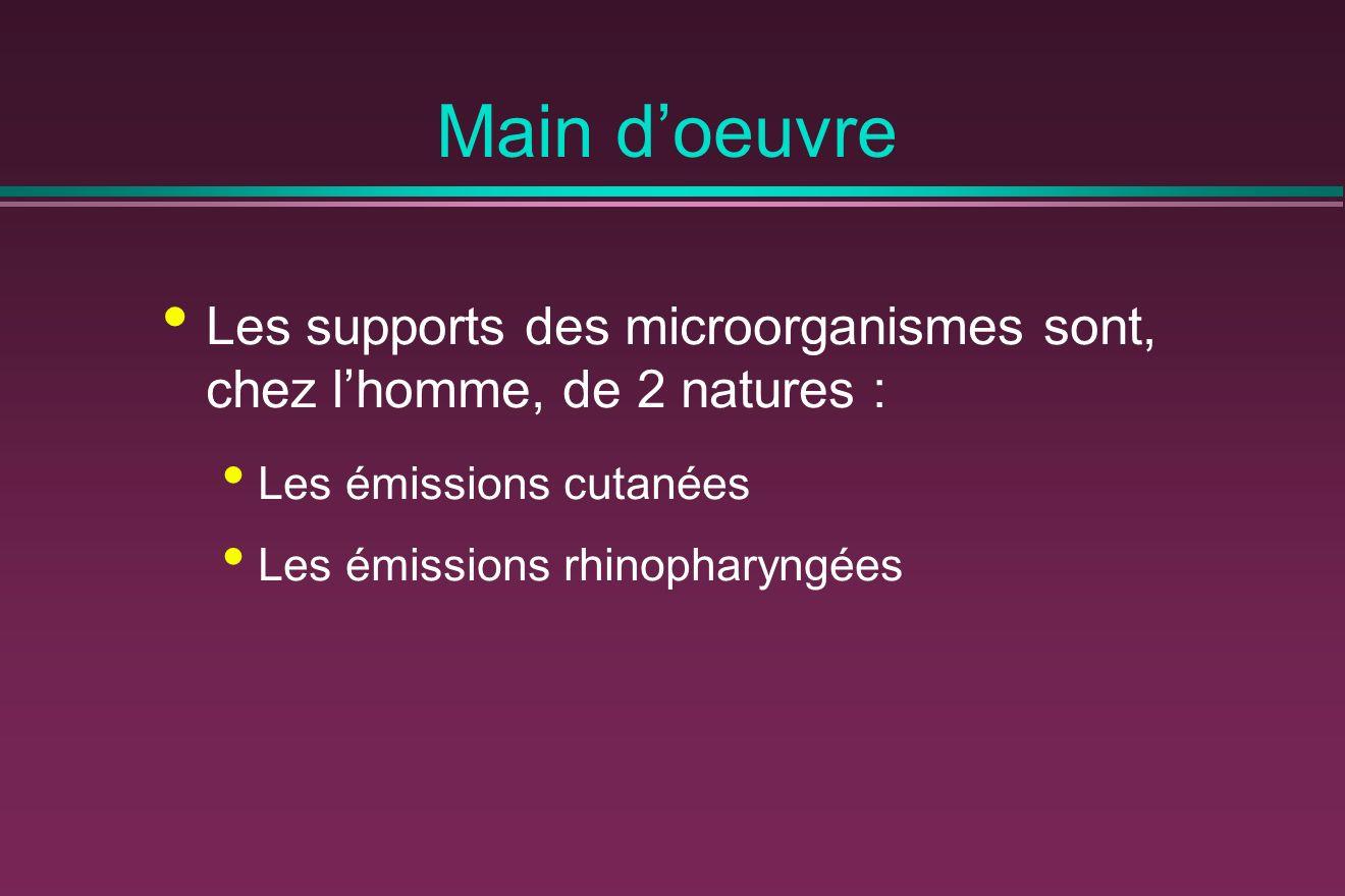 Main d'oeuvre Les supports des microorganismes sont, chez l'homme, de 2 natures : Les émissions cutanées.