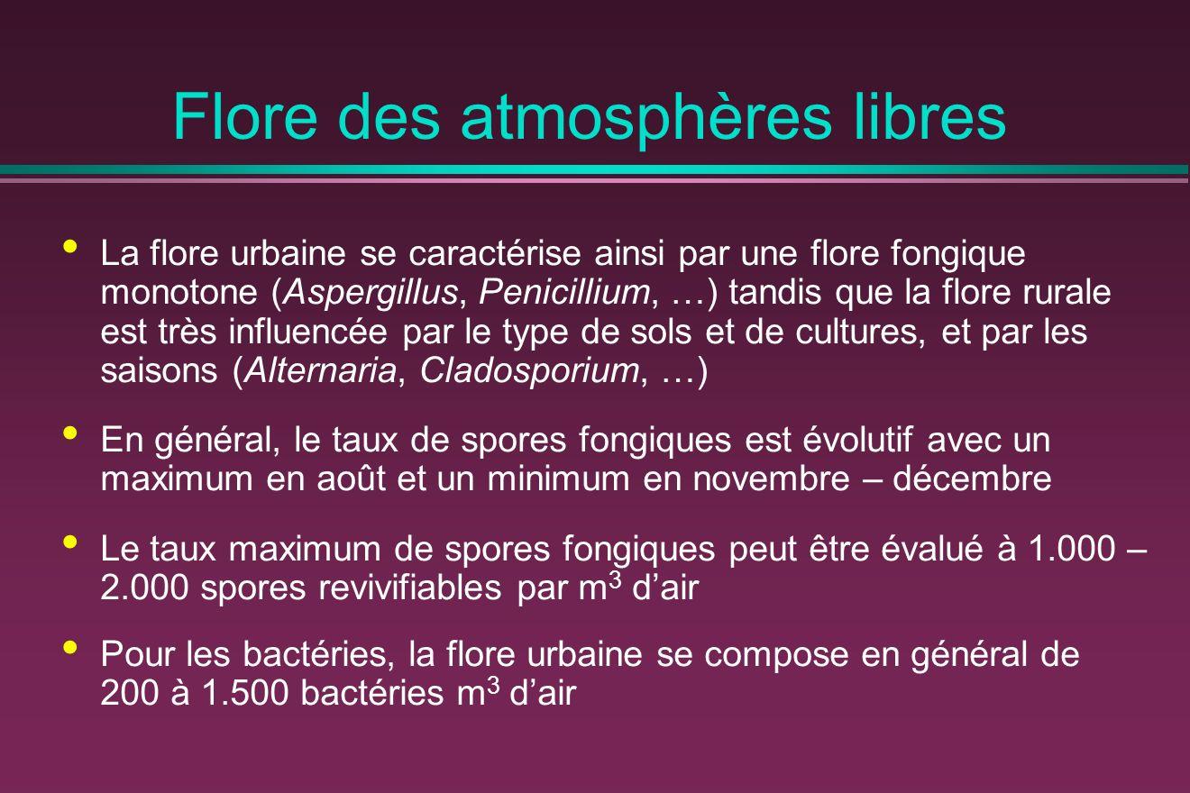 Flore des atmosphères libres