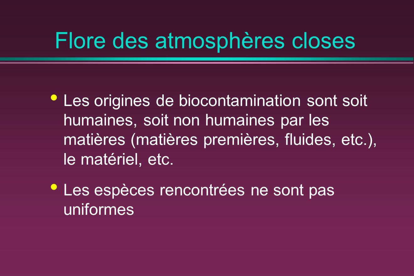 Flore des atmosphères closes