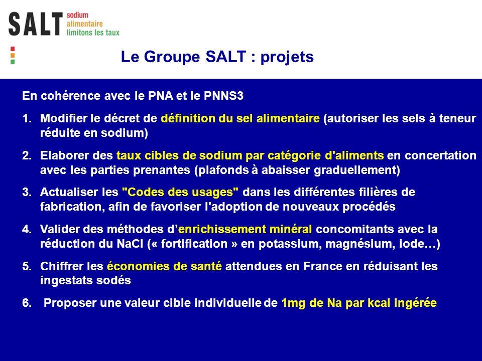 Le Groupe SALT : projets