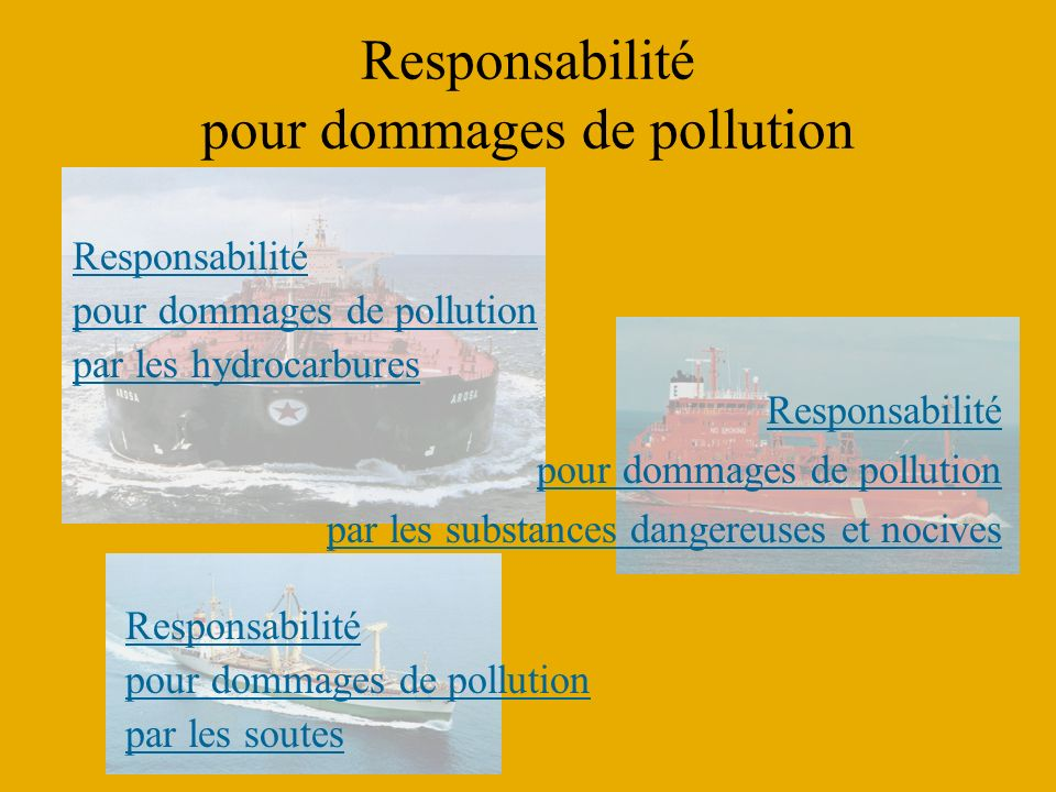 Responsabilité pour dommages de pollution