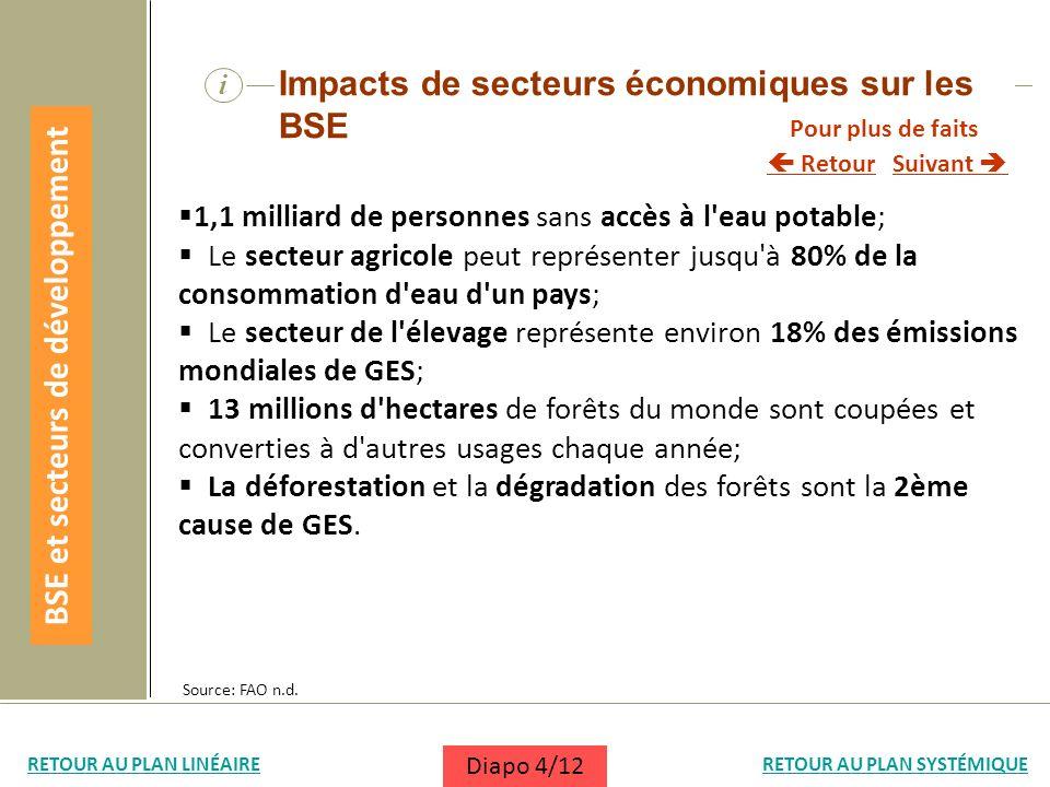 BSE et secteurs de développement