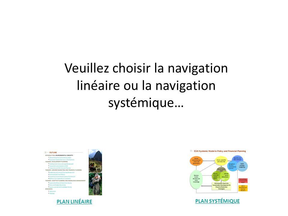 Veuillez choisir la navigation linéaire ou la navigation systémique…