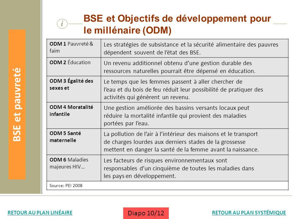 BSE et Objectifs de développement pour le millénaire (ODM)