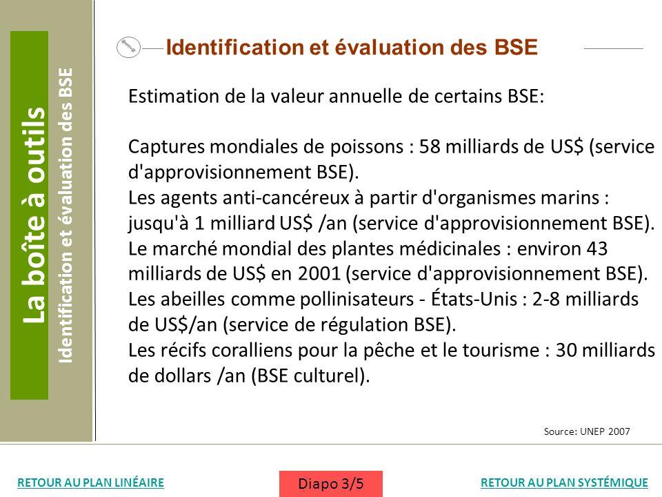 Identification et évaluation des BSE