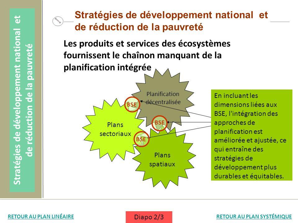 Stratégies de développement national et de réduction de la pauvreté