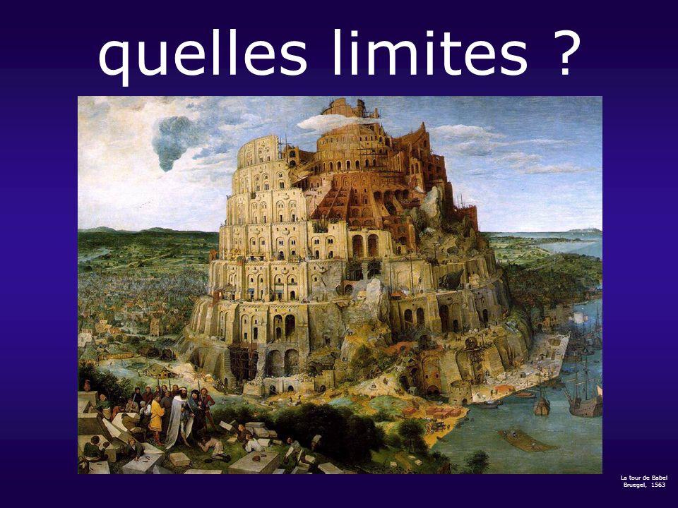 quelles limites La tour de Babel Bruegel, 1563