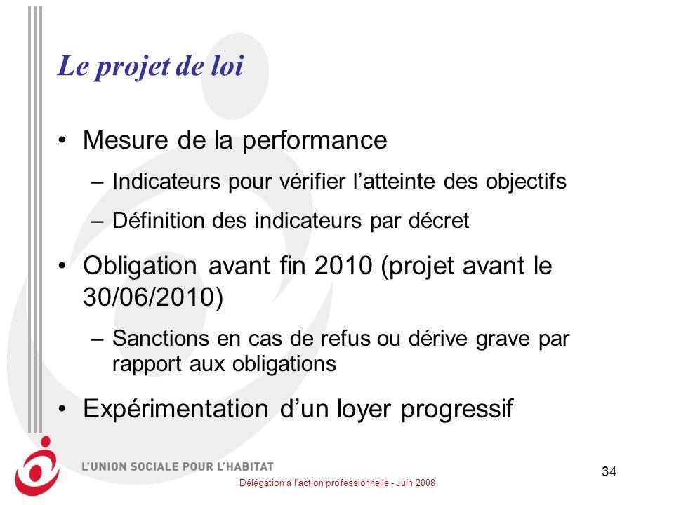 Délégation à l action professionnelle - Juin 2008