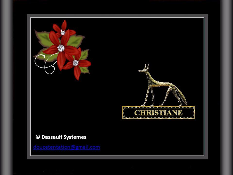 © Dassault Systemes doucetentation@gmail.com
