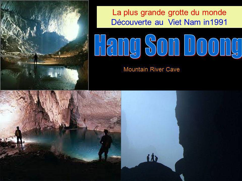Hang Son Doong La plus grande grotte du monde